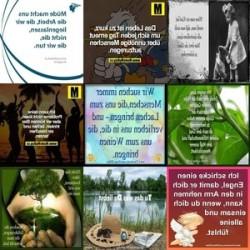 ein Blog aus den neusten TopHits