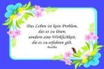 Zitate-ueber-das-Leben-3.pps auf www.funpot.net