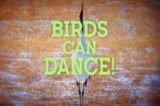 Danses avex les oiseaux