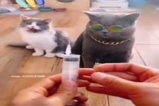 Angst vor der Impfung