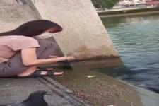 Überraschung im Wasser