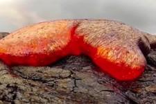 Viel Lava