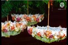 aussergewöhnliche Blüten-Regenschirme