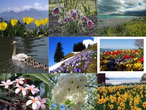 Frühling nach langem Winter