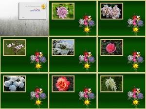 Des fleurs du jardin - Blumen aus dem Garten