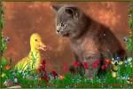 Nette-Tieranimation.mp4 auf www.funpot.net