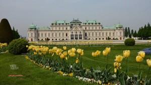 Gustav Klimt at Belvedere Vienna