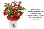 Sprueche-von-Persoenlichkeiten-164.pps auf www.funpot.net