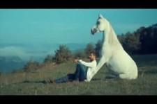 die Pferde von Pierre Lamarque