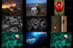 nikoniansphotographyawardswinners2017.ppsx auf www.funpot.net