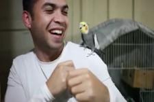 das sind ja lustige Vögel