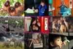 Augenblicke-16.ppsx auf www.funpot.net