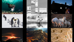 Photo of Day from Siena International Photography Awards 202