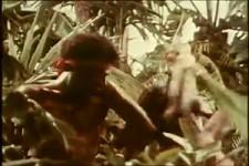 Sergio Mendes Brasil 66 - Mas Que Nada 1966