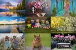 Photo-mix-58.ppsx auf www.funpot.net