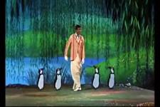 Pinguin Dance