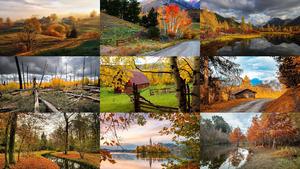 Beautiful Autumn 10