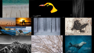Australian Geographic Nature Photographer of the Year Compet