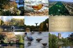herbst-im-central-park-new-york.pps auf www.funpot.net