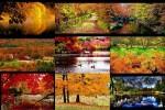 autumnalmanac1.pps auf www.funpot.net