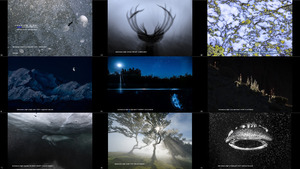 Asferico International Nature Photography Competition 2021
