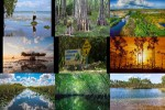 Everglades-Florida-USA.ppsx auf www.funpot.net