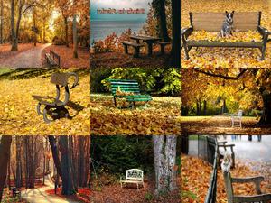 Baenke im Herbst