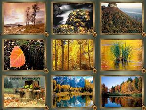 Farbenspiel Herbst 2